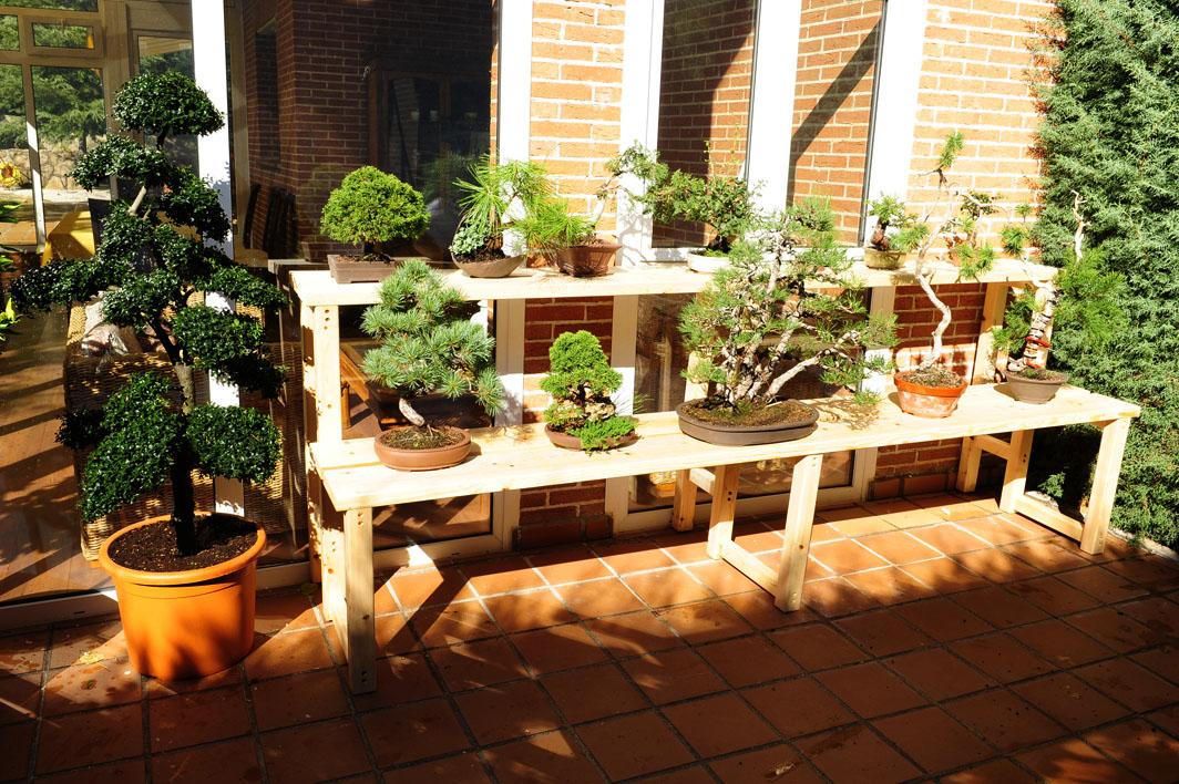 Arte en madera tablas de cortar madera maciza muebles for Estanterias para bonsais